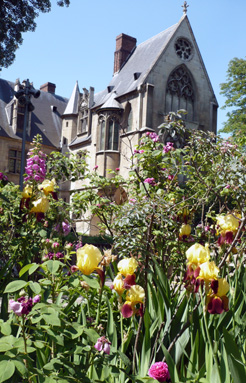 jardin-medieval-de-cluny-motif-1.jpg