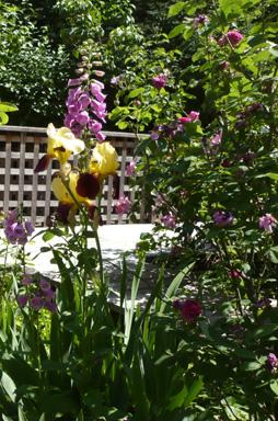 jardin-medieval-de-cluny-motif-2.jpg
