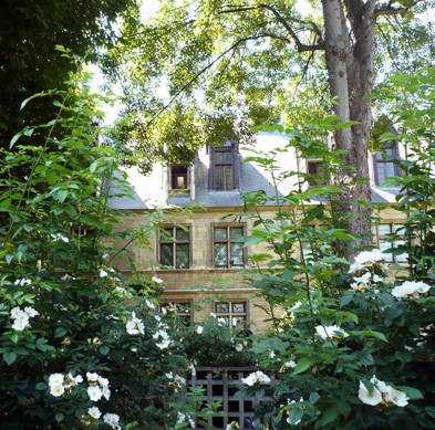jardin-medieval-de-cluny-motif-3.jpg