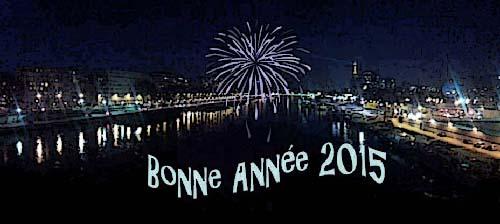 bonne-annee-2015-blog.jpg